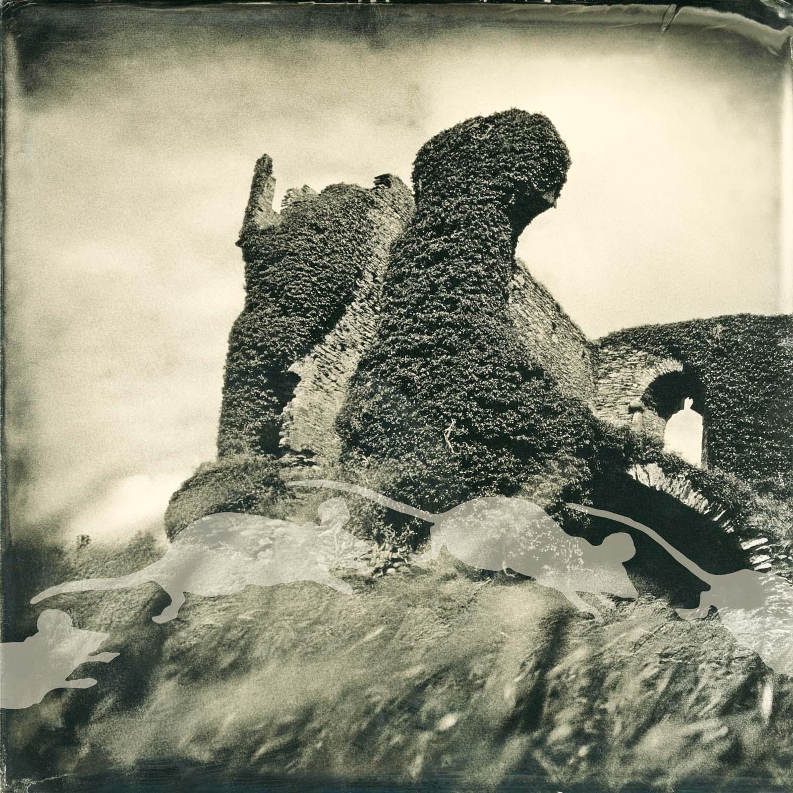 Rats and Ruins, 2011